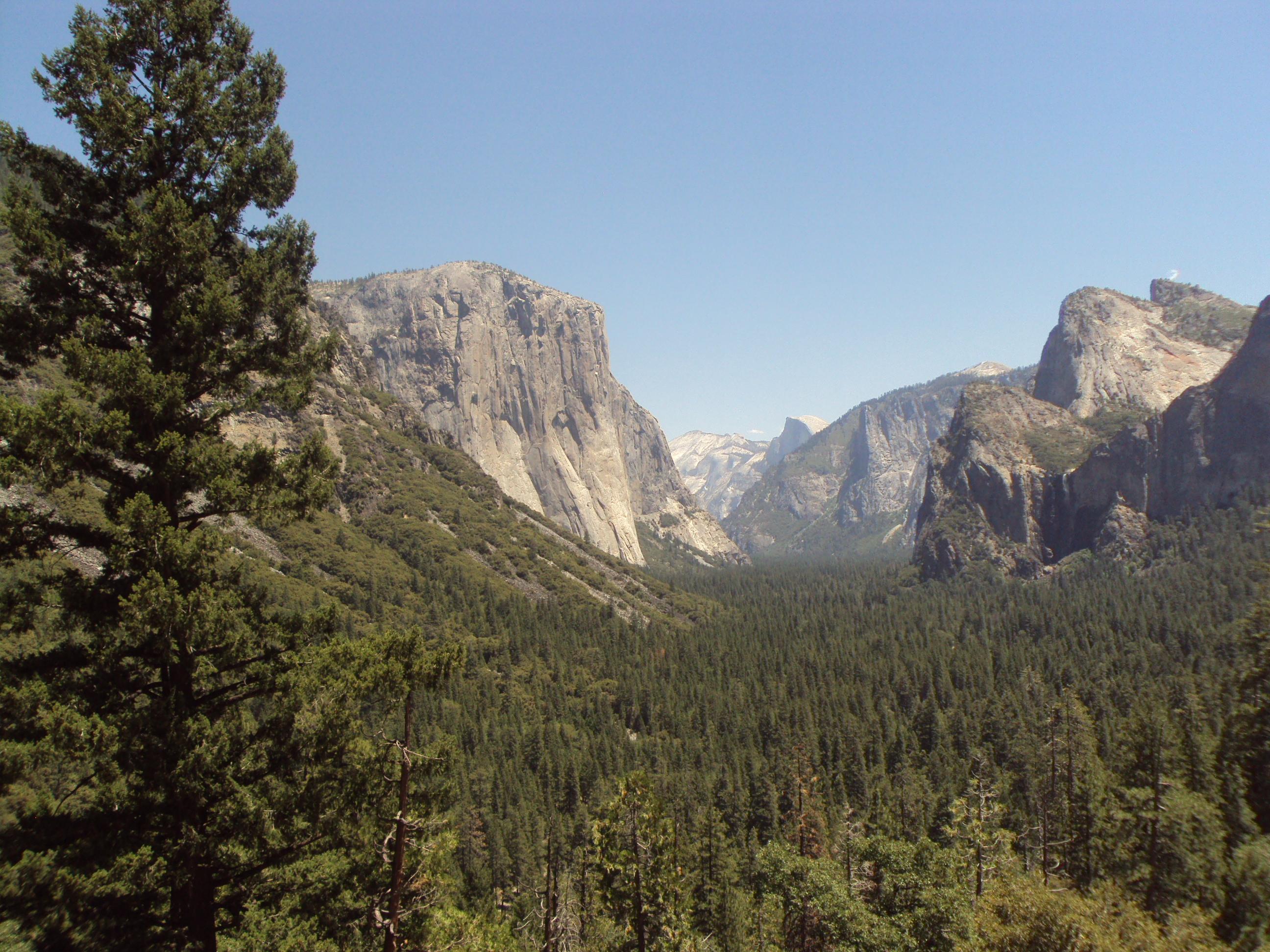 Yosemite Holiday