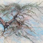 Pine Whisperer